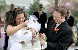 A butterfly release wedding ceremony with bride and groom releasing the butterflies