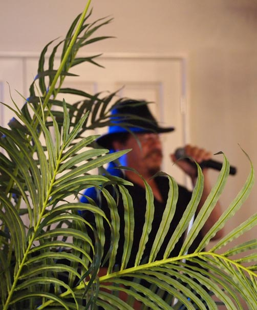 Master of Ceremonies Header Image of Shane Kells being MC at a wedding reception